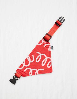 aerie Wild & Woofy Swag & Strut Bandana Collar