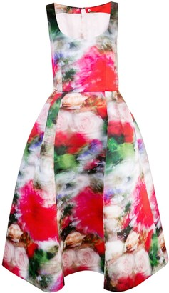 Adam Lippes Flared Floral Print Dress