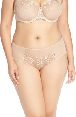 Natori Seduction Bikini Briefs (Plus Size)