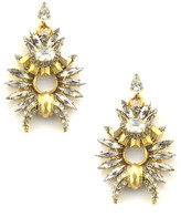 Elizabeth Cole Arnett Earrings