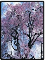 "Fleece Blanket Discount 58""x 80"" (Large) Cotton Blankets and Throws with Cherry blossom tree,Japan Cherry blossom Theme"