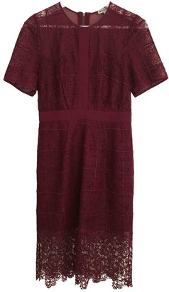 Whistles Burgundy Lace Dress for Women