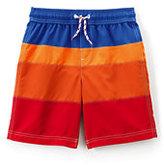 Classic Toddler Boys Colorblock Swim Trunks-Soft Lupine