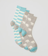 LOFT Cozy Polar Bear Crew Sock Set