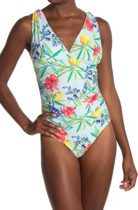 Athena Simple Pleasures One Piece Swimsuit