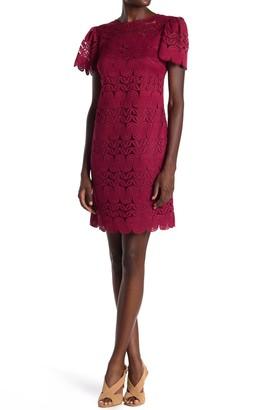 trina Trina Turk Levanzo Lace Shift Dress