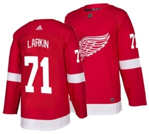 adidas Men's Dylan Larkin Detroit Red Wings Authentic Player Jersey
