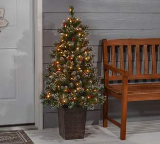 Pottery Barn Pre-Lit Faux Potted Glazier Pine Tree