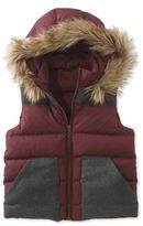 L.L. Bean Signature Hooded Puffer Vest