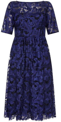Adrianna Papell Embrodiered Dress