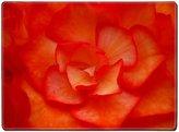 MSD Custom Design Placemat, Unique Printed Dining Rubber Table Mat Designer for flower nature rose macro beautiful plant summer orange blossom bloom closeup beauty petals yellow garden