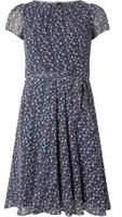 Dorothy Perkins Womens **Billie & Blossom Navy Ditzy Floral Chiffon Dress