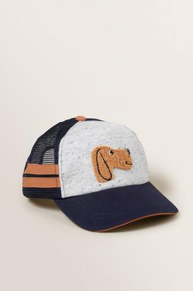 Seed Heritage Dog Cap