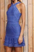 Greylin Blue Lace Dress
