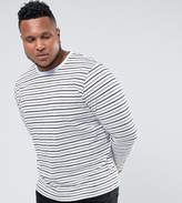 Bellfield PLUS Long Sleeve T-Shirt In Stripe