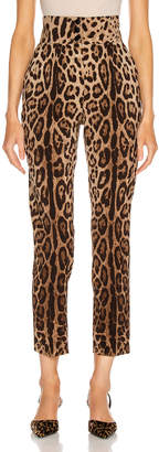 Dolce & Gabbana High Waisted Pant in Leopard | FWRD