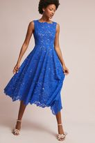 Tracy Reese Cerulean Lace Midi Dress