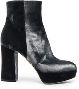 Gianvito Rossi Velvet Foley Platform Booties in Gray.