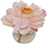 The French Bee Peony In A Bubble Vase