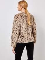Dorothy Perkins Animal Faux Fur Jacket - Multi