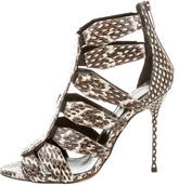 Sergio Rossi Snakeskin Caged Booties