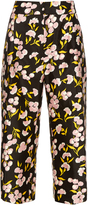 Marni Sistowbell floral-print cotton-blend trousers