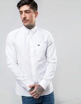 Lacoste Live Oxford Shirt Buttondown Small Croc Logo Slim Fit White