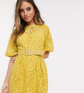 Little Mistress Petite belted lace mini dress in yellow