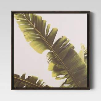 "Minted Project 62 20"" X 20"" Palm Framed Canvas - Project 62TM"