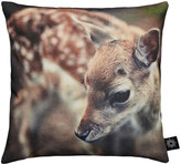 Houseology By Nord Baby Deer Cushion