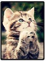 AOIKH Custom Kitten Cat Throw Fleece Blanket 58 Inch x 80 Inch (Large)