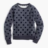 J.Crew Textured polka dot raglan sweatshirt