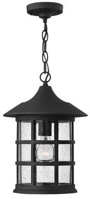 clear Freeport 1 Light Outdoor Hanging Lantern Hinkley Finish: Black, Bulb Type: LED, Shade Type Seedy