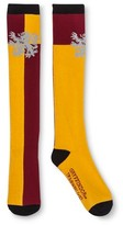 Harry Potter Gryffindor Women's Knee High Sock - Burgundy/Gold One Size Fits Most