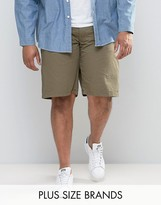 Loyalty & Faith Loyalty And Faith Plus Chino Shorts