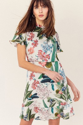 Oasis Hot Tropics Multi Natural High Neck Skater Dress