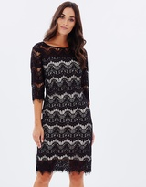 Wallis Scallop Lace Dress