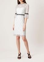 Hobbs Myla Dress