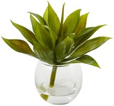 """Nearly Natural 5.75"""" Mini Agave Succulent Trio in Glass Vases - Set of 3"""
