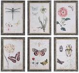 Home Decorators Collection 13 in. H x 9.5 in. W Herbarium Prints Framed Wall Art (Set of 6)