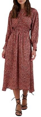 BB Dakota Wild in Style Dress (Rust) Women's Clothing