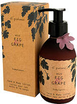 Di Palomo Wild Fig Grape Hand and Body Lotion, 250ml