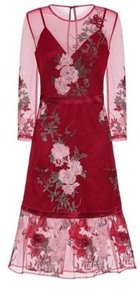 Dorothy Perkins Womens *Chi Chi London Burgundy Embroidered Skater Dress, Burgundy