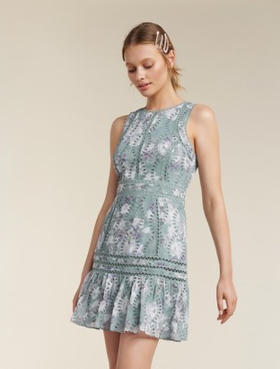 Forever New Blair Printed Broderie Dress - Sheer Ivory Floral - 14