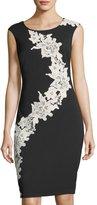 Jax Lace-Embellished Sheath Dress