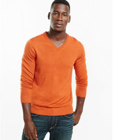 Express Merino Wool V-neck Sweater