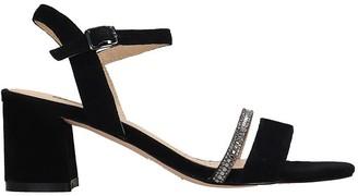 Bibi Lou Sandals In Black Suede
