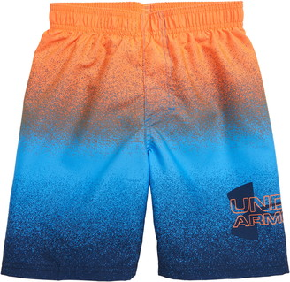 Under Armour Spray Logo Volley Shorts