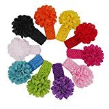 Alonea Multicolor 10 Color Newborn Toddler Baby Girls Boys Flower Headband Head Wrap (Colorful)