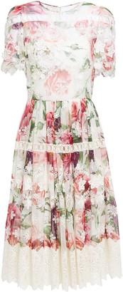 Dolce & Gabbana Lace-trimmed Appliqued Floral-print Silk-blend Voile Dress